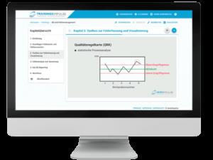 8D Management Luftfahrt E-Learning und Online Schulungen CBT 2